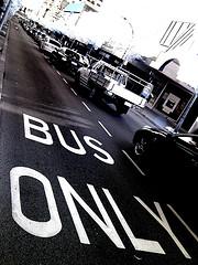 empty bus lane in peak hour by Adam Loh