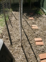 my new vegie patch, seeds just planted