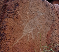 rock carving of a speared kangaroo in the Burrup on Flickr by Alan Thompson