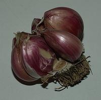 my dad's segmented garlic