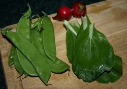 snow peas, radish and pak choy