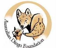 Sponsor a Dingo