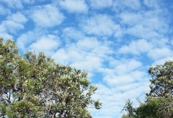 a beautiful autumn sky