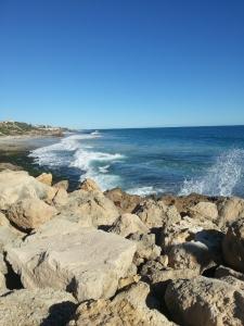 Marmion Marine Park follows the rocky limestone coast