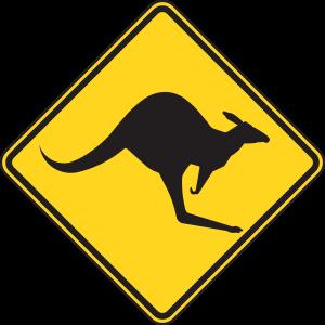 beware of kangaroos on the road