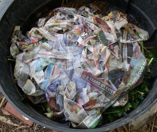 newspaper covers the earthworms and their food