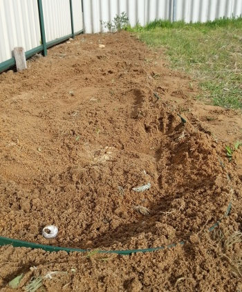 the lawn edging buried along the new bed